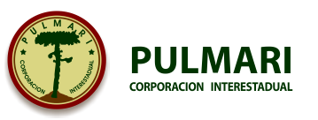 Corporacion Interestadual Pulmarí logo