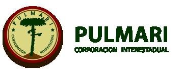 Corporacion Interestadual Pulmarí logo
