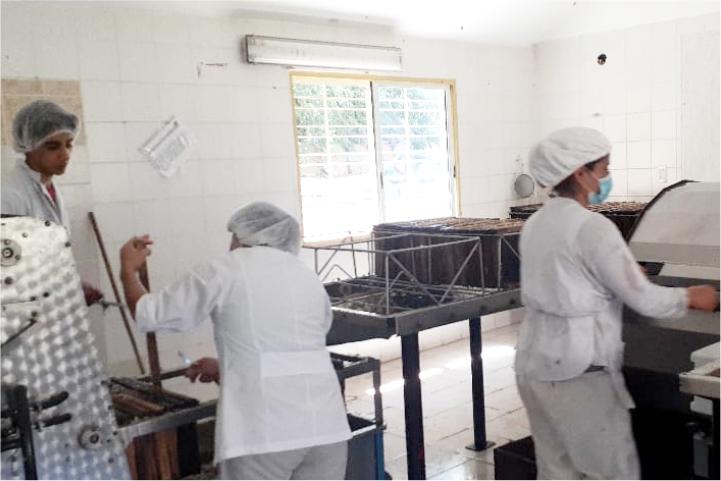 produccion apicola pulmari
