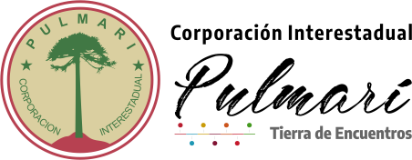 Corporación Interestadual Pulmarí logo