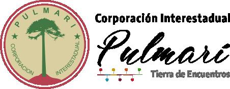 Corporación Interestadual Pulmarí logo