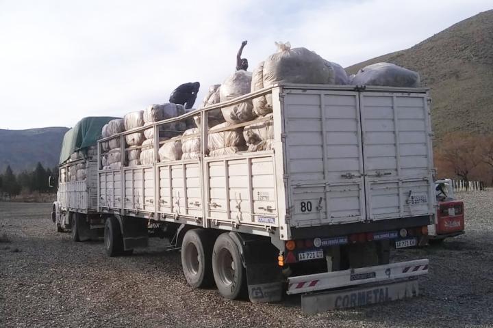 La CIP y su personal colaboró con la Comisión Ganadera del CoDRA en la logística de los fardos de lana del Programa Pro-lana